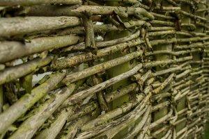 Zaun aus Weidengeflecht als Befestigung einer mittelalterlichen Motte