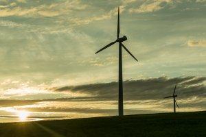 Windkraftwerke erzeugen saubere Energie