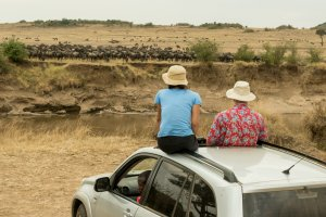 Safari-Touristen in Kenia warten darauf, dass die Gnus den Mara-Fluss überqueren.